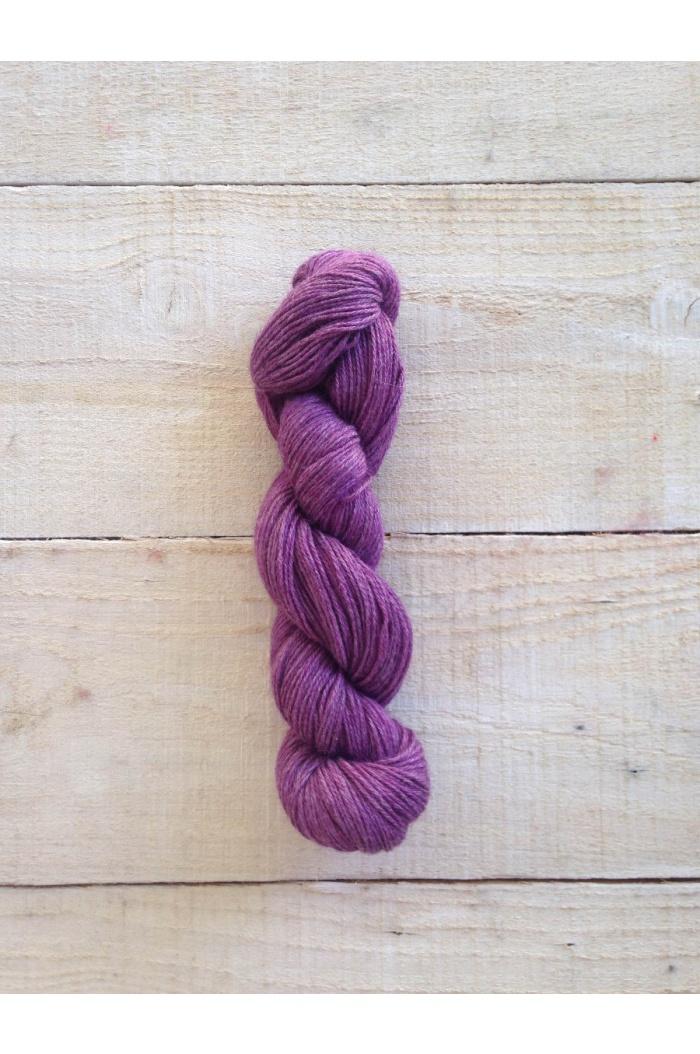 S2621 Boysenberry